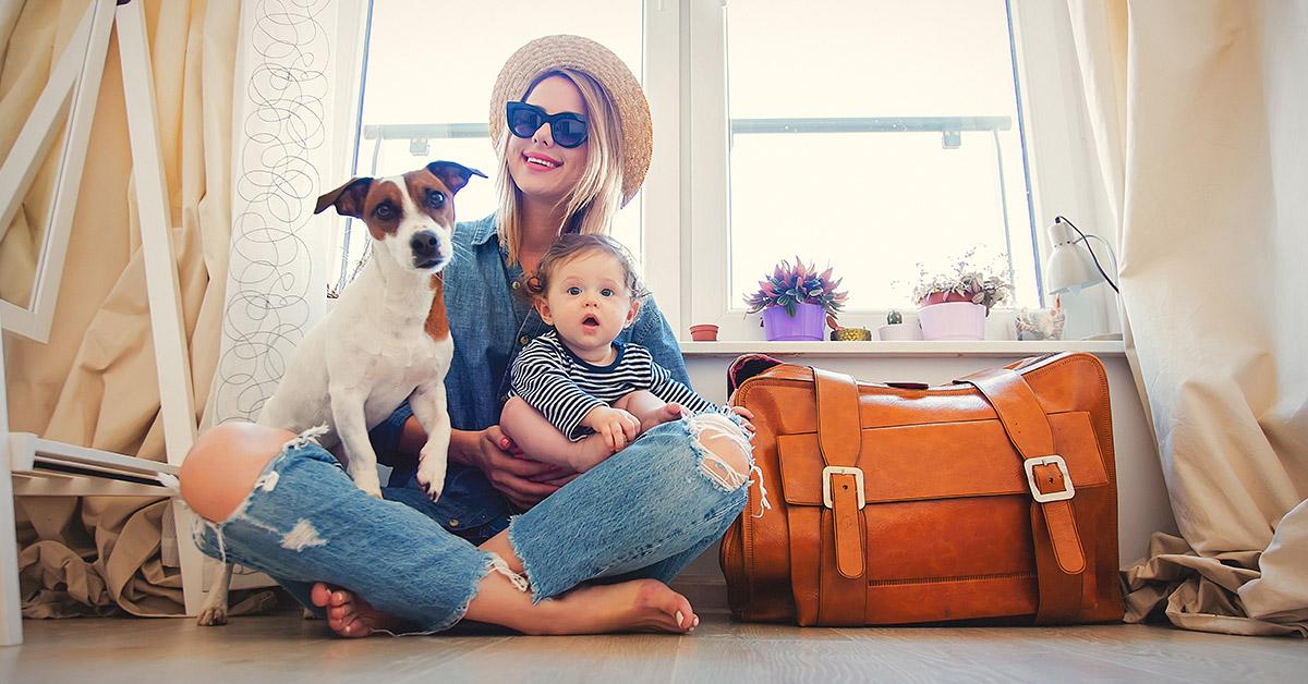reizen-met-huisdier-naar-spanje
